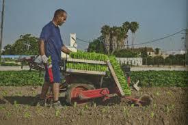 Resultado de imagen de ingenieria agraria sin royalties