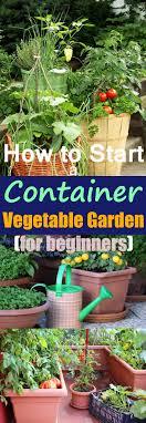 starting a container vegetable garden