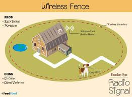 Best Wireless Dog Fence Ultimate Electric Dog Fence In 2020