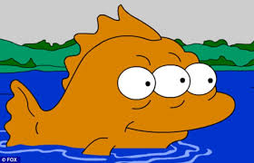 Image result for blinky fish