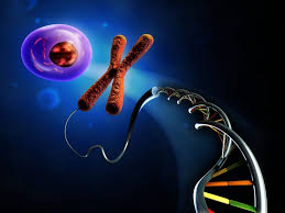 Image result for DNA in the Government Sector Market
