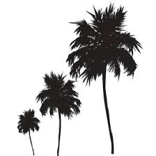 Three Palm Trees Wall Decals Dezign With A Z