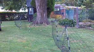 My Alternative To Electric Fences Backyard Chickens Learn How To Raise Chickens