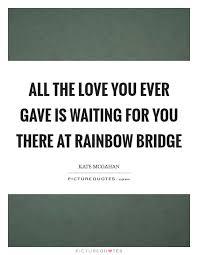 rainbow bridge quotes sayings rainbow bridge picture quotes