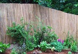 Affordable Privacy Fence Options Lovetoknow