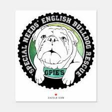 White Bulldog Stickers Zazzle