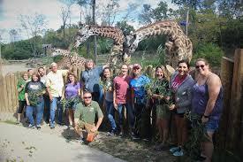 cincinnati zoo botanical garden