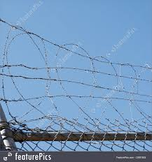 Image Of Barbed Wire Security Fence