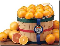 florida oranges and gourmet gift baskets