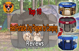 Top 10 Best Portable Dog Playpen For Camping Reviews Best Top Care With Dogs