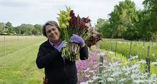 lisa ziegler on growing hardy annuals