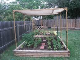 raised garden with a shade cloth to