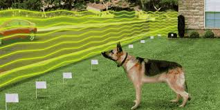 In Ground Electric Dog Fences