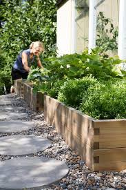 raised beds for a vegetable garden