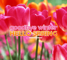 goodbye winter hello spring say it a pic