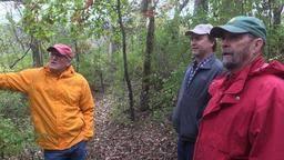 News about savanna-wood