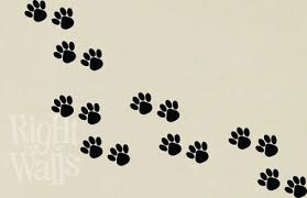 animal paw prints dog cat wall decals