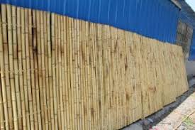China Lw F25 Natural Bamboo Fence Panel Bamboo Screen Panels Bamboo Trendlines China Fence Panel