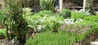 how to plan a vegetable garden design