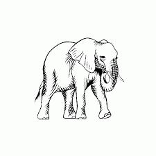 091 Elephant Vinyl Sticker