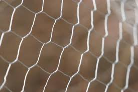 Ideas For Plant Protection With Chicken Wire Home Guides Sf Gate