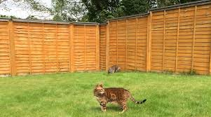 Oscillot Proprietary Ltd Spinning Paddle Cat Proof Fence System