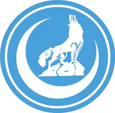 Grey Wolves Organization Wikipedia