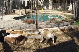 Dog Fences And Pool Fence For Pets Pet Fence Supplies