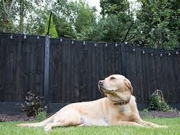 Dog Fencing Dog Runs Dog Jump Barriers And Dog Compounds