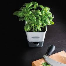cole mason h105249u self water herb