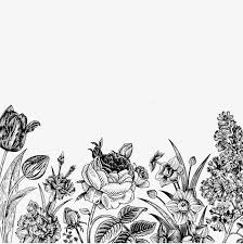 flower black and white png