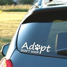 Amazon Com Signage Cafe Adopt Don T Shop Vinyl Decal Perfect For The Dog Lover In All Of Us Automotive