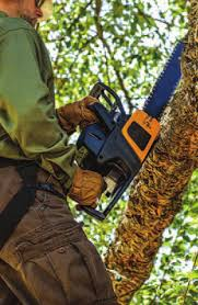 Image result for mna disaster response keith perry chainsaw