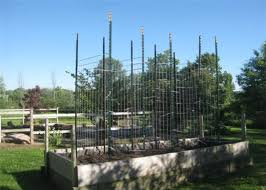Green Steel Fence T Post 1 3 4 In X 3 1 2 In X 6 Ft Chain Link Fence Fittings For Sale Chain Link Fence Fittings Manufacturer From China 110465157