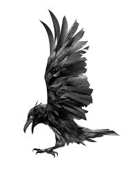 Watercolor Raven Wall Decal Wallmonkeys Com