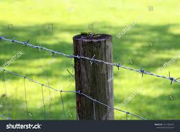 Fence Post Barbed Wire Fencing On Stock Photo Edit Now 1514184575