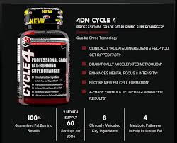 review 4 dimension nutrition cycle 4