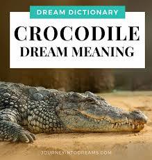 Alligator Crocodile Dream Meaning Interpretation Journeyintodreams