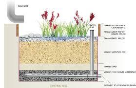 action create a rain garden