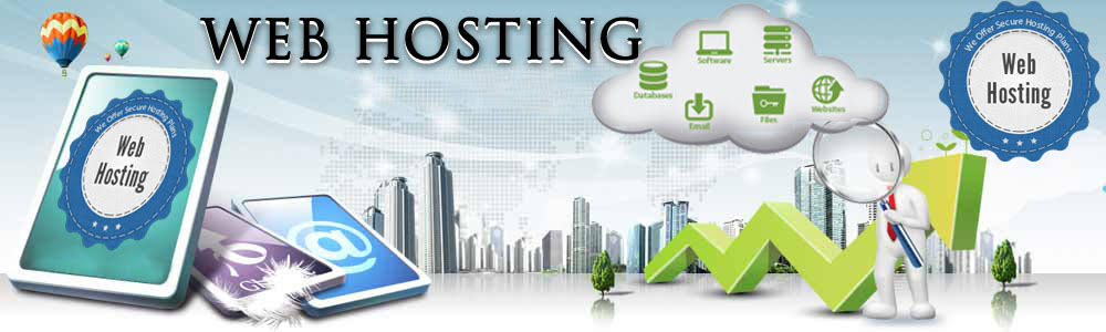 Image result for Business Hosting Services in India""