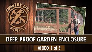 Build A Deer Bear Proof Garden Fence With Raised Beds Video 1 Of 3 Youtube