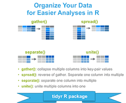 tidyr crucial step reshaping data with