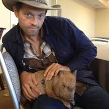 Misha Collins - Actor - The Shorty Awards