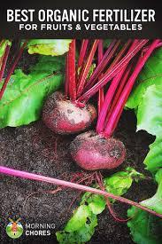 6 best organic fertilizer for fruits