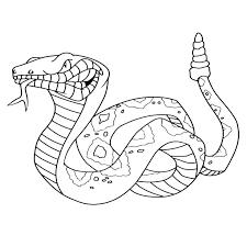 Slangen 0010 Dieren Kleurplaten Kleurplaten Disney Kleurplaten