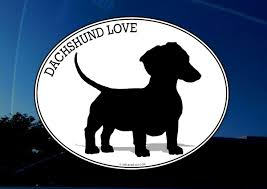 Amazon Com Dachshund Decal Sticker I Love My Dachshund Cute Wiener Dog Vinyl For Car Truck Laptop Wall Etc Arts Crafts Sewing