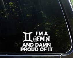 Amazon Com Sweet Tea Decals I M A Gemini And Damn Proud Of It 6 1 4 X 3 3 4 Vinyl Die Cut Decal Bumper Sticker For Windows Trucks Cars Laptops Macbooks Etc Automotive