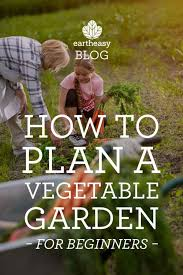 how to plan a vegetable garden for