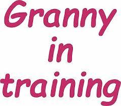 Granny In Training Vinyl Decal Car Bumper Sticker Wall Art Laptop Window Grandma Ebay