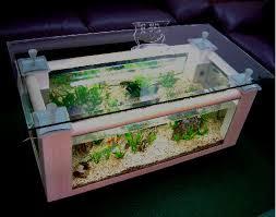 coffee table aquariums